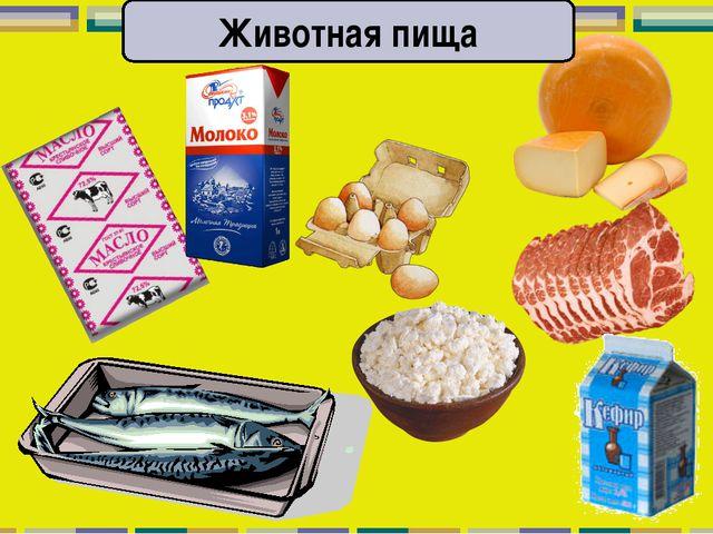 Животная пища