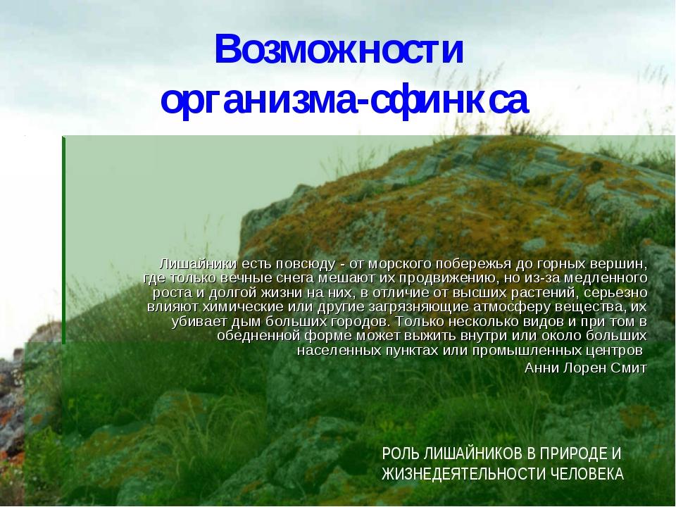 Возможности организма-сфинкса Лишайники есть повсюду - от морского побережья...