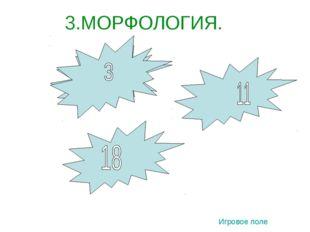 3.МОРФОЛОГИЯ. 3 1 2 Игровое поле
