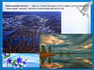 Васюганские болота— одни из самых больших болот в мире, расположены на терри