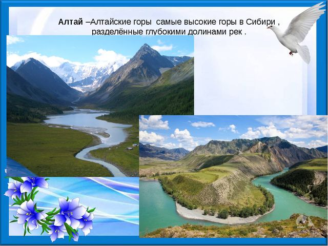 Алтай–Алтайские горы самые высокие горы в Сибири , разделённые глубокими до...