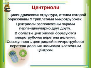 Центриоли цилиндрическая структура, стенки которой образованы 9 триплетами м