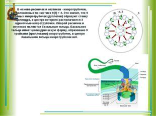 В основе ресничек и жгутиков - микротрубочки, расположенные по системе 9(2)
