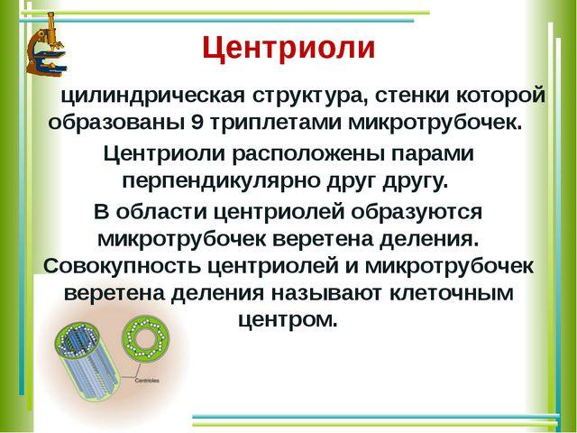 Центриоли цилиндрическая структура, стенки которой образованы 9 триплетами м...