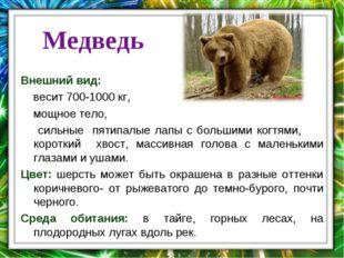 . Медведь Внешний вид: весит 700-1000 кг, мощное тело, сильные пятипалые лапы