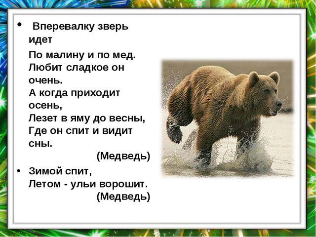 Вперевалку зверь идет По малину и по мед. Любит сладкое он очень. А когда пр...