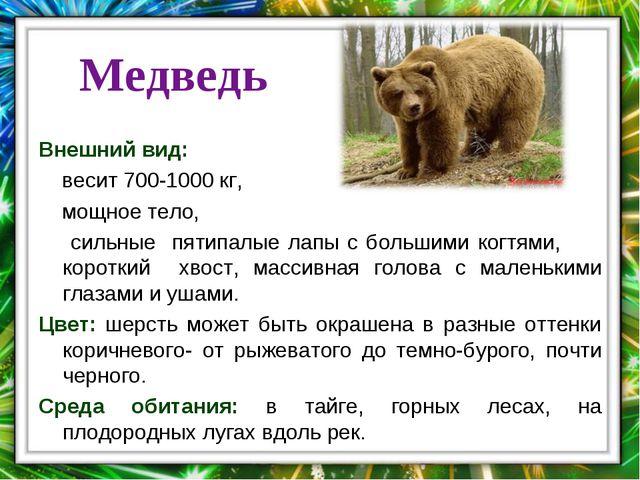 . Медведь Внешний вид: весит 700-1000 кг, мощное тело, сильные пятипалые лапы...