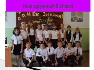 Наш дружный 5 класс!