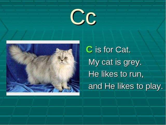 Cc C is for Cat. My cat is grey. He likes to run, and He likes to play.