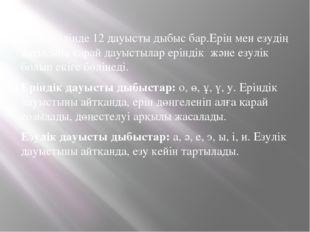 Қазақ тілінде 12 дауысты дыбыс бар.Ерін мен езудің қатысына қарай дауыстылар