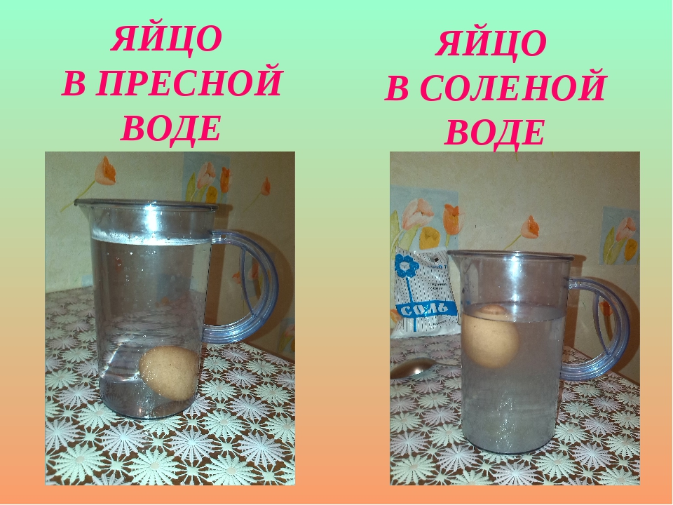 Яйцо тонет в пресной воде но плавает в солёной. почему