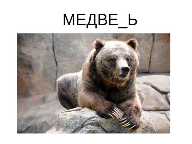 МЕДВЕ_Ь