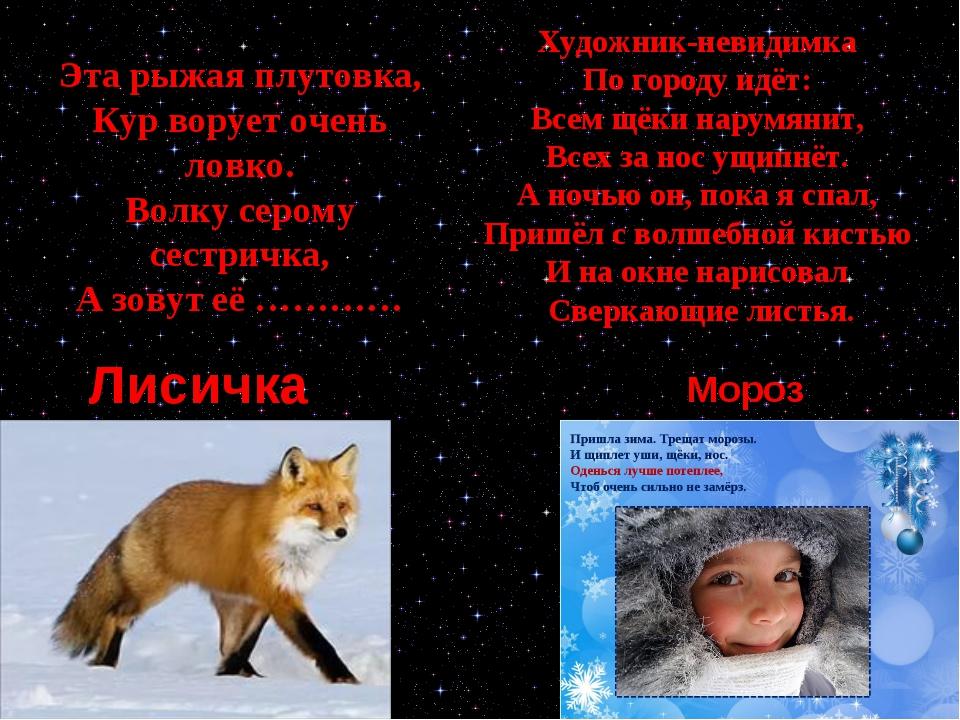 Лисичка Мороз Эта рыжая плутовка, Кур ворует очень ловко. Волку серому сестри...