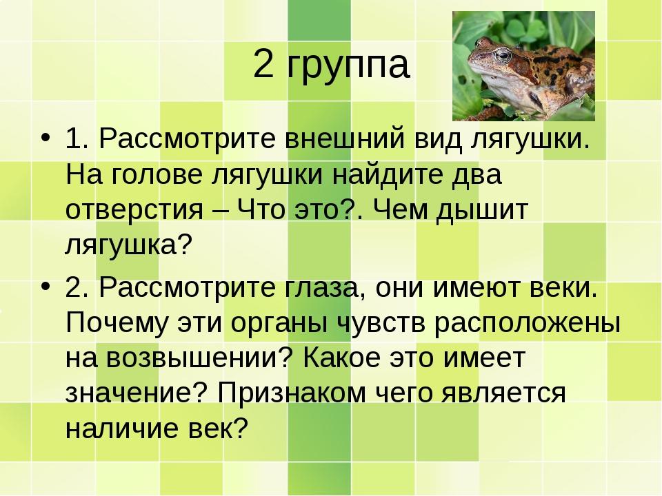 2 группа 1. Рассмотрите внешний вид лягушки. На голове лягушки найдите два от...