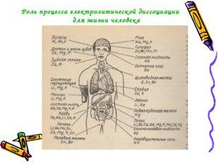 Роль процесса электролитической диссоциации для жизни человека