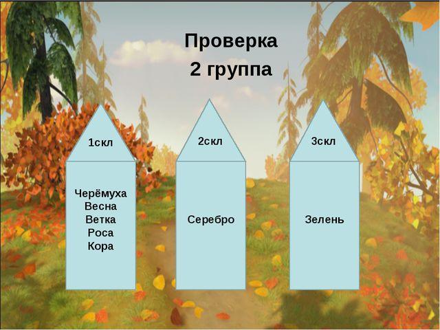Проверка 2 группа Черёмуха Весна Ветка Роса Кора Серебро Зелень 2скл 3скл 1скл