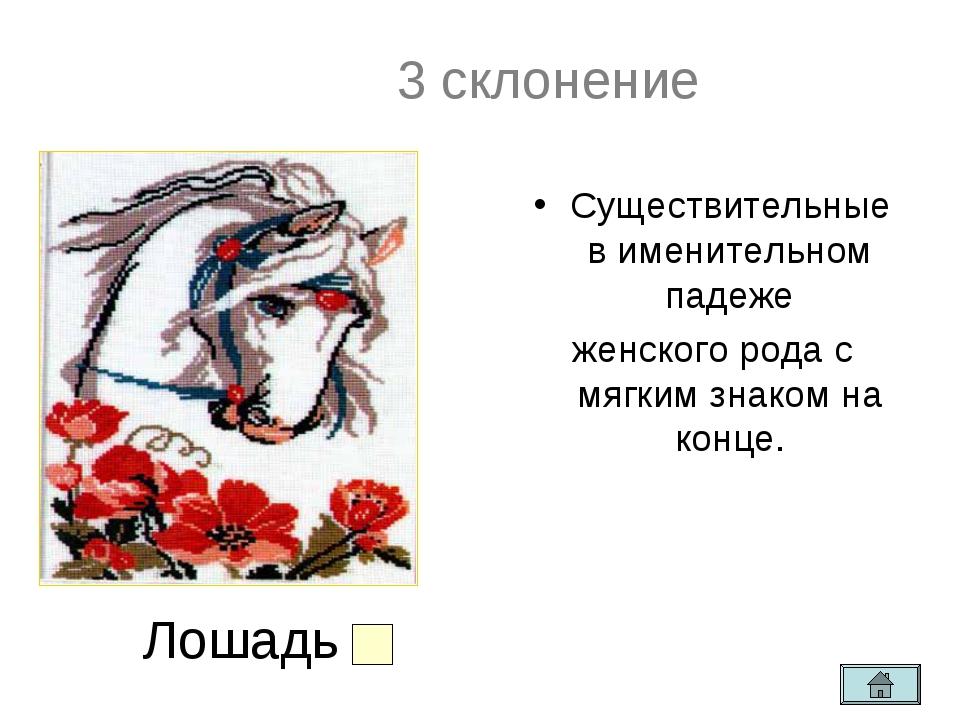 3 скн 3 склонение ие Существительные в именительном падеже женского рода с мя...