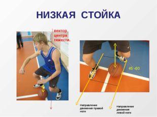 НИЗКАЯ СТОЙКА вектор центра тяжести. Направление движения правой ноги Направл