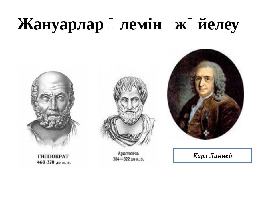 Карл Линней Жануарлар әлемін жүйелеу