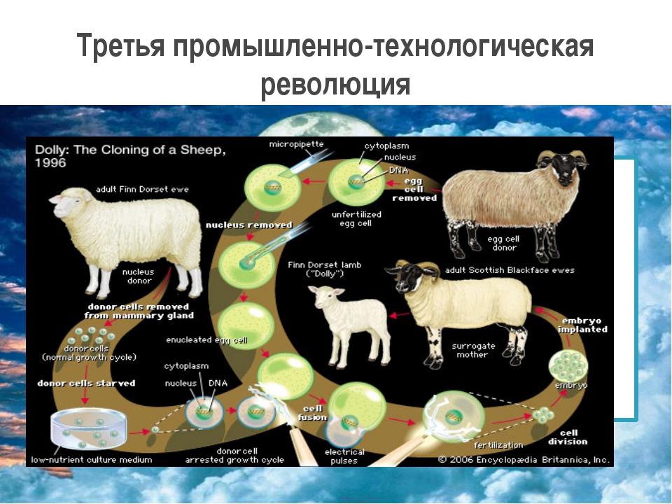 Биотехнология – продовольствие, которое не подвержено воздействию вредных нас...