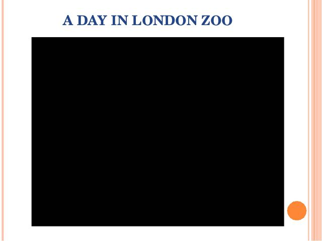 A DAY IN LONDON ZOO