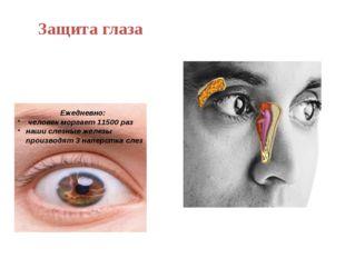 Защита глаза Ежедневно: человек моргает 11500 раз наши слезные железы произво