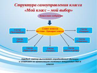 Структура самоуправления класса «Мой класс – мой выбор» Классное собрание Со
