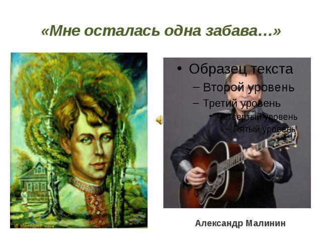 «Мне осталась одна забава…» Александр Малинин