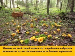 Осенью мы всей семьей ездим в лес за грибами и я обратила внимание на то, что