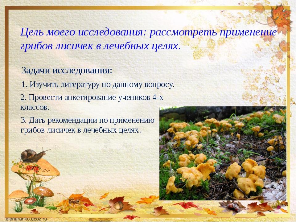 Цель моего исследования: рассмотреть применение грибов лисичек в лечебных цел...