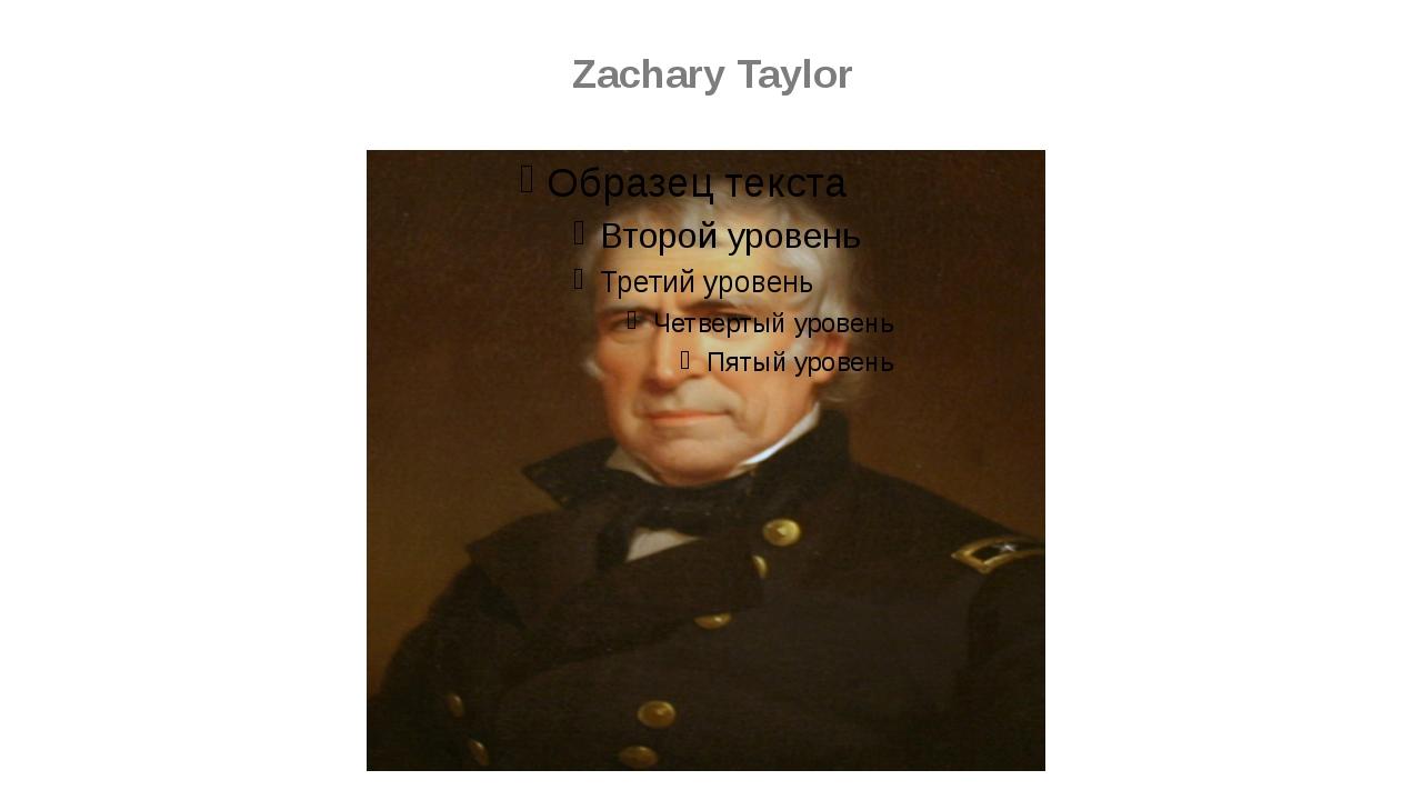 zachary taylor essay