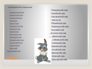 зайцы В состав рода включают следующие виды: Американский беляк Арктический