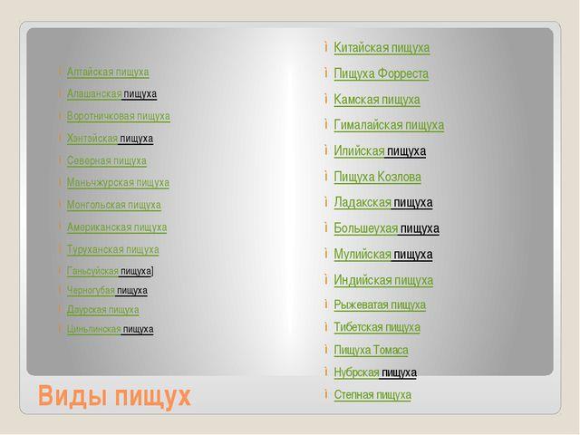 Виды пищух Алтайская пищуха Алашанская пищуха Воротничковая пищуха Хэнтэйск...