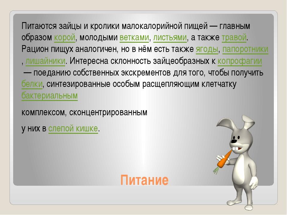 Питание Питаются зайцы и кролики малокалорийной пищей— главным образомкорой...