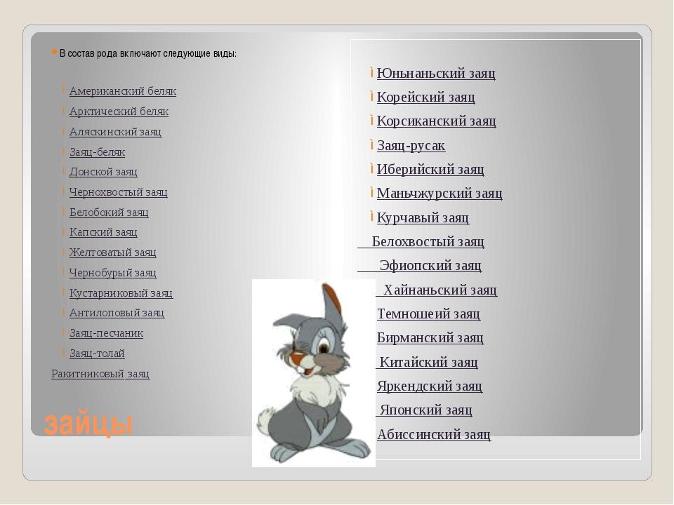 зайцы В состав рода включают следующие виды: Американский беляк Арктический...