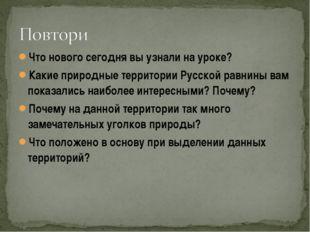 Что нового сегодня вы узнали на уроке? Какие природные территории Русской рав