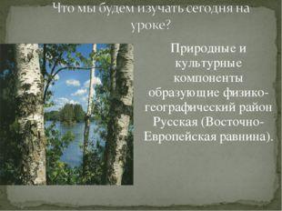 Природные и культурные компоненты образующие физико-географический район Русс