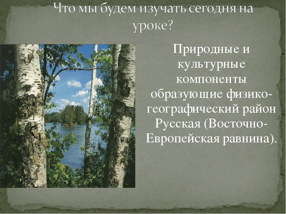 Природные и культурные компоненты образующие физико-географический район Русс...