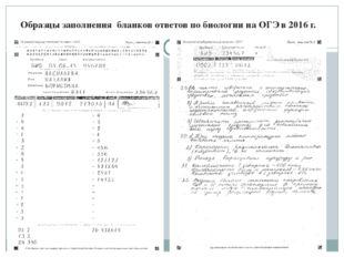 Образцы заполнения бланков ответов по биологии на ОГЭ в 2016 г.