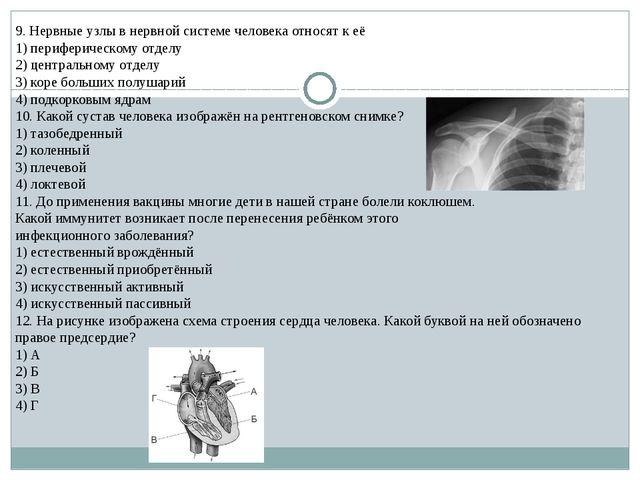 9. Нервные узлы в нервной системе человека относят к её 1) периферическому от...