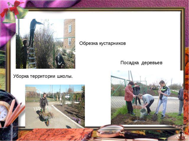 Обрезка кустарников Уборка территории школы. Посадка деревьев