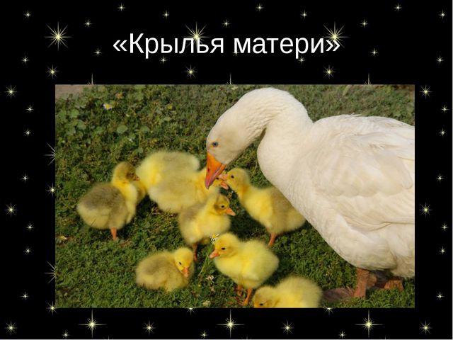 «Крылья матери»