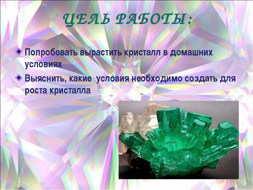 ЦЕЛЬ РАБОТЫ: Попробовать вырастить кристалл в домашних условиях Выяснить, как...