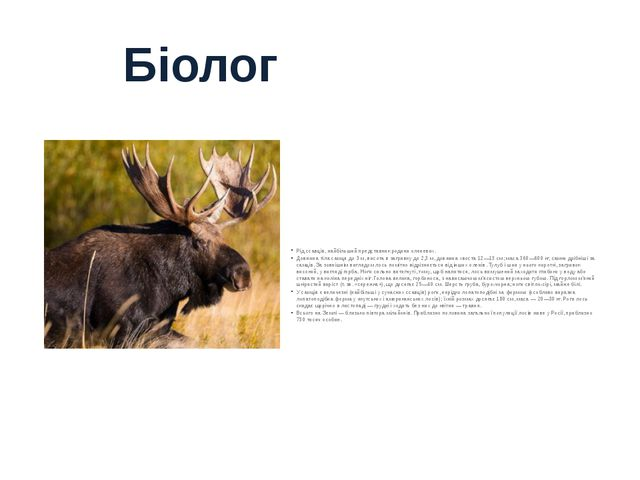 Рід ссавців, найбільший представник родини оленевих. Довжина тіла самця до 3...