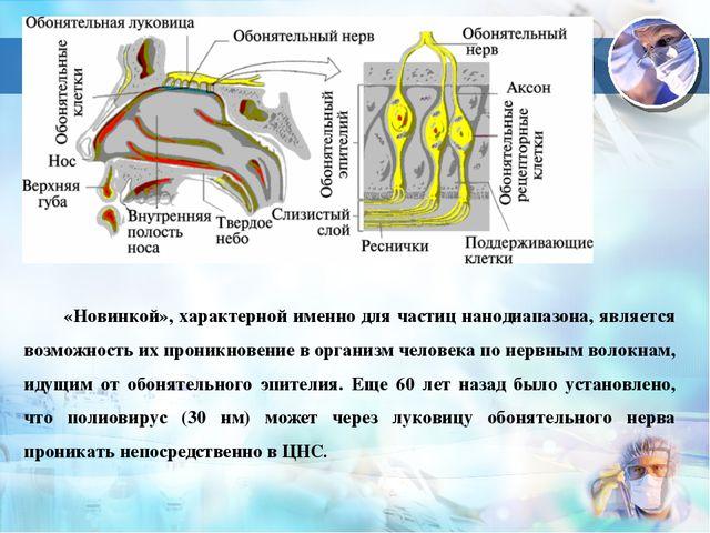 3 «Новинкой», характерной именно для частиц нанодиапазона, является возможнос...