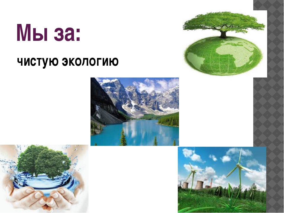 чистую экологию Мы за:
