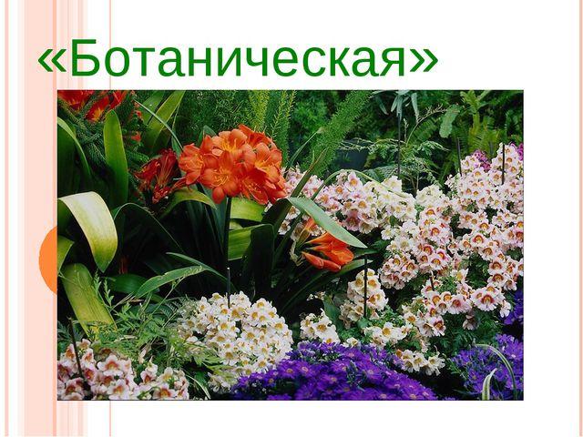 «Ботаническая»