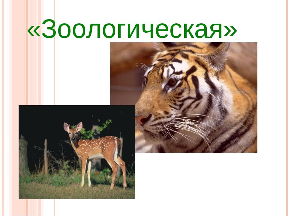 «Зоологическая»