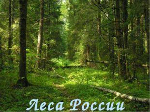 Леса России Базовый уровень к е р д т и г р Повышенный уровень т а й г а п и