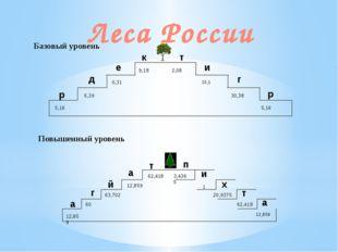 Тайга Лесных земель на территории России — почти 51 %, из этого количества бо